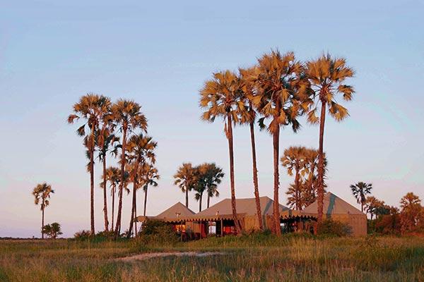 botsuana-jacks-camp-en-la-salina-de-makgadikgadi
