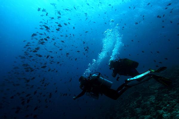 maldivas-buceo-en-el-paraiso