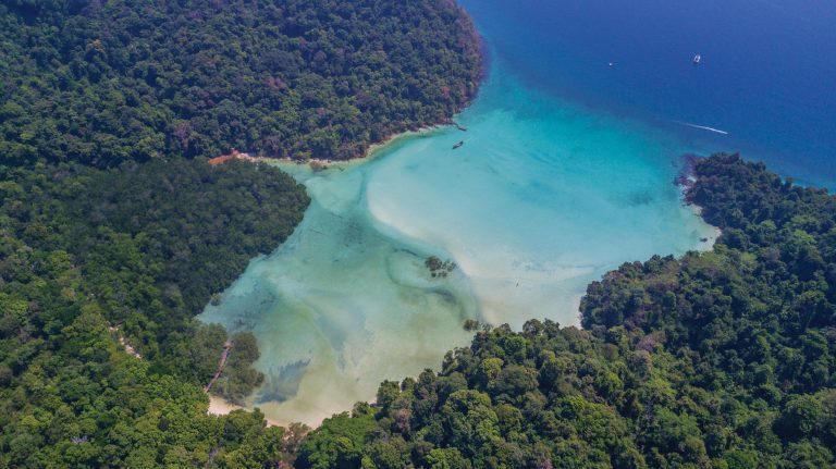 Wa-Ale-mangrove-beach-05